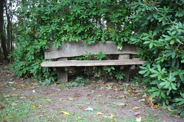 Lonely Bench sm