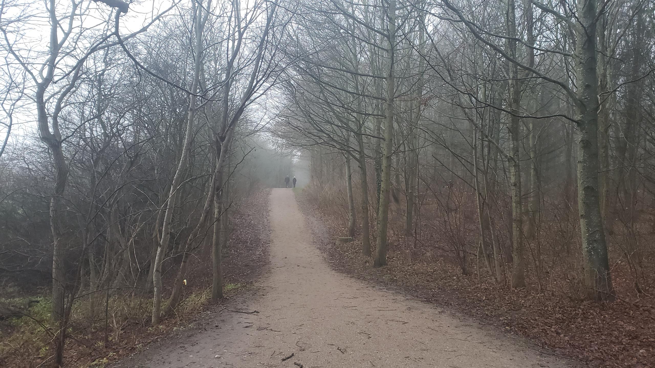 Trail outside Holbaek Denmark